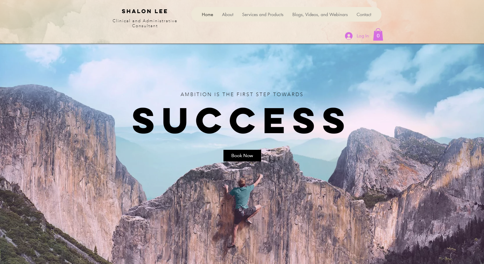 Lee Consulting Services - Killeen website client